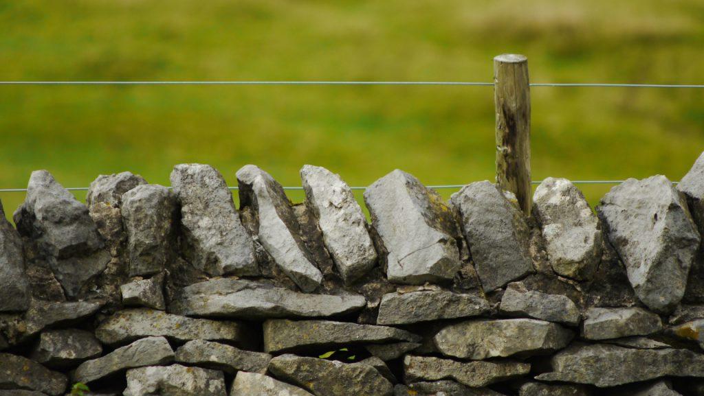 לעמוד מול קיר - פרשת ויחי - הודיה לבורא עולם